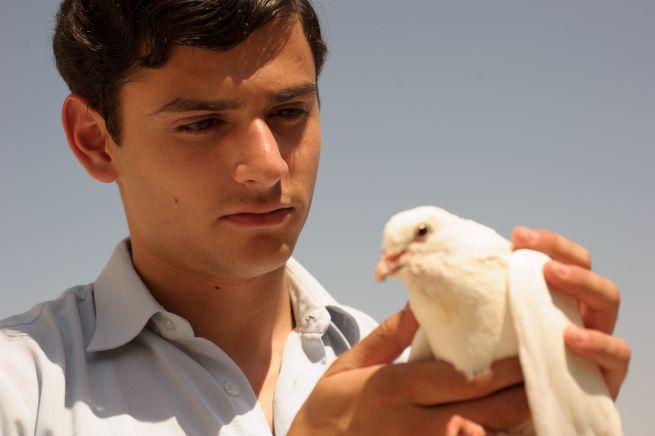 Farewell Baghdad (2014)