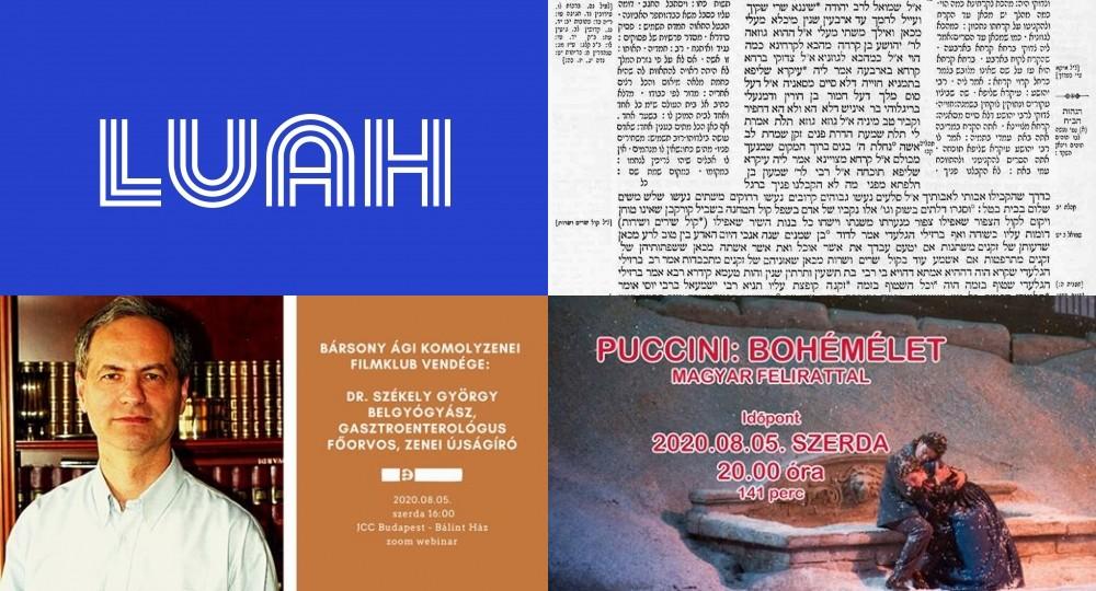 hirolvaso.com napi hírlevél * 2020-08-05